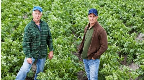 kaksi maanviljelijää viljelyksillä